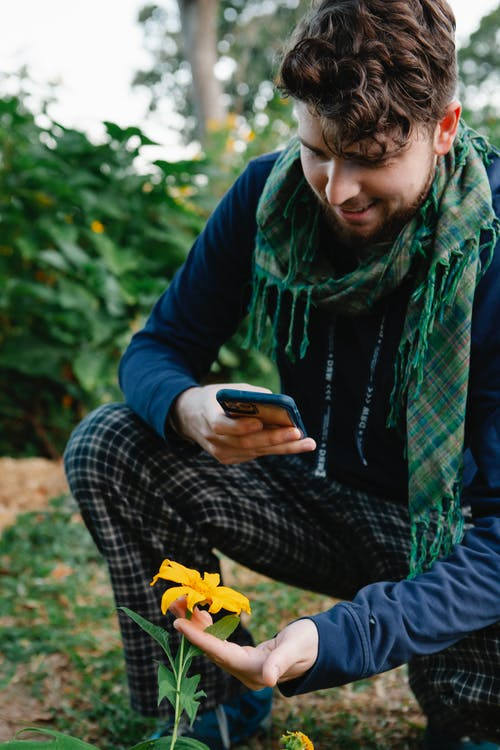 Crop male in stylish checkered scarf and trousers using mobile phone for taking photo of bright yellow flower in garden