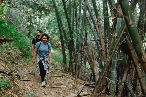 Active young couple strolling in jungle during romantic trip