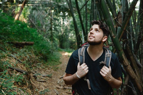 Happy young bearded male hiker in casual clothes and backpack smiling and looking up while standing near bamboo trees during hiking trip in sunlight