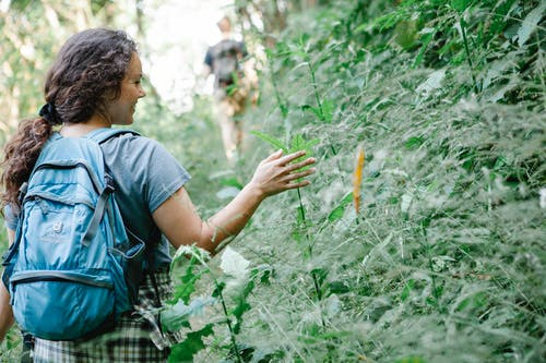 Cheerful young female hiker smiling and touching plants in jungle