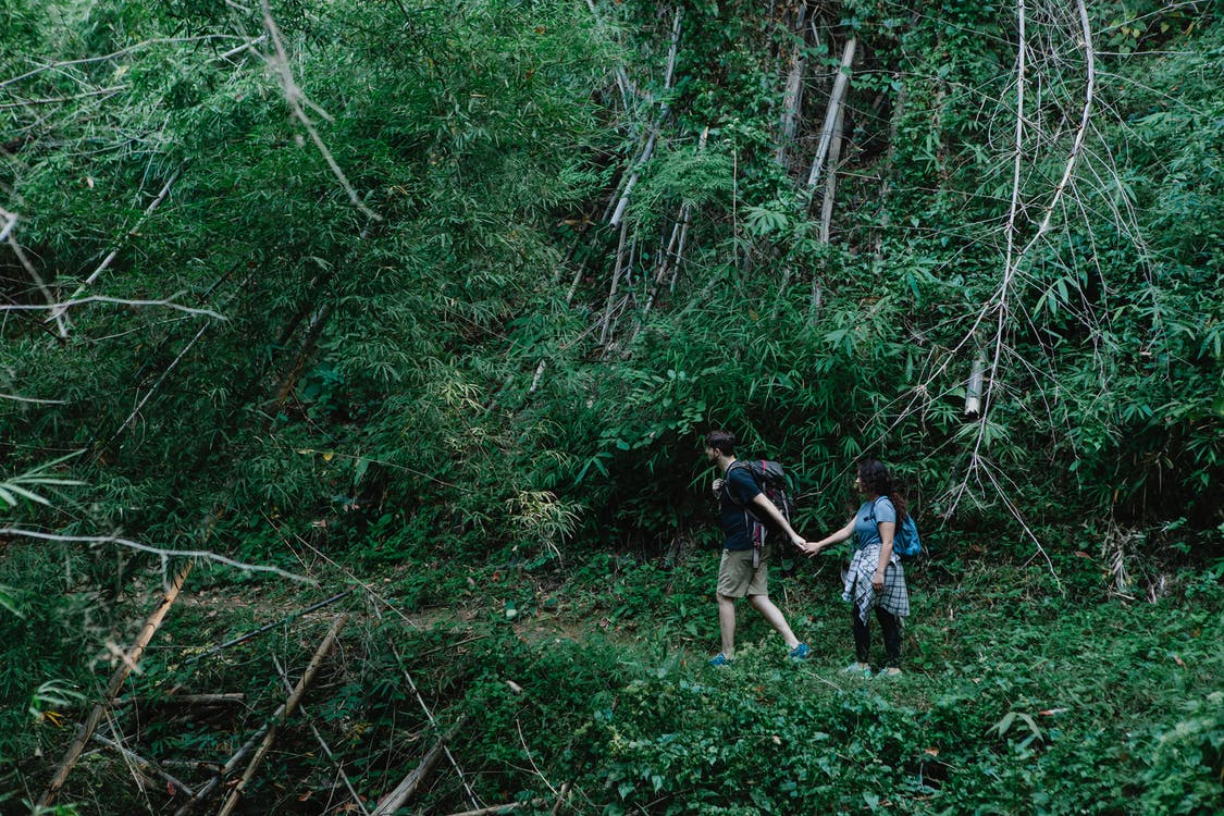 Couple of travelers walking in green forest in daytime