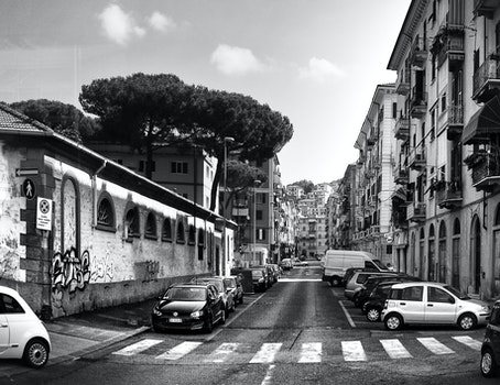 Free stock photo of black-and-white, city, cars, road