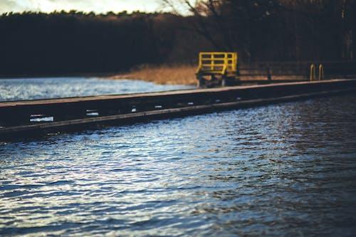 Fotos de stock gratuitas de agua, de madera, estanque, madera