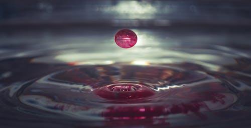 Безкоштовне стокове фото на тему «bleu, вода, краплі, легкий»