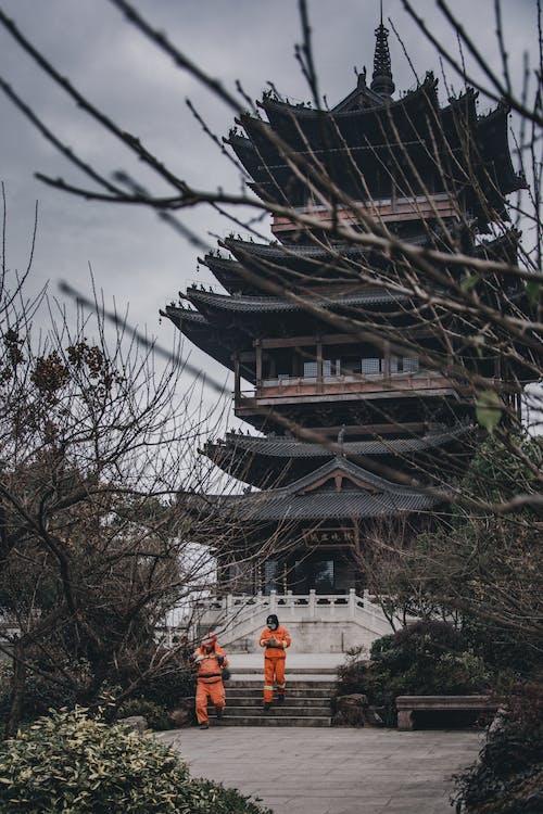 Traditional Asian pagoda among plants