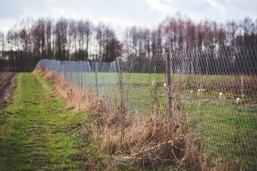 Mesh fence on the nature