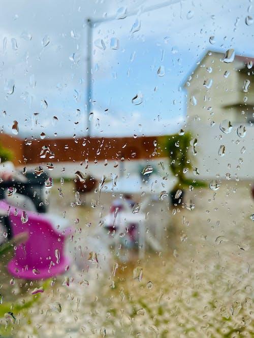 Kostnadsfri bild av fönster, regn, vinter