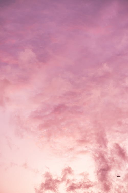 Background of amazing pink cloudy sunset sky