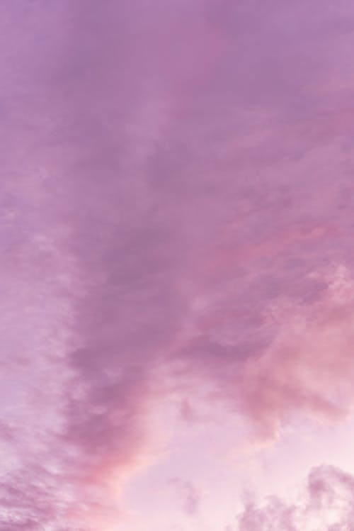 Low angle of spectacular sunset sky with purple fluffy clouds as abstract background