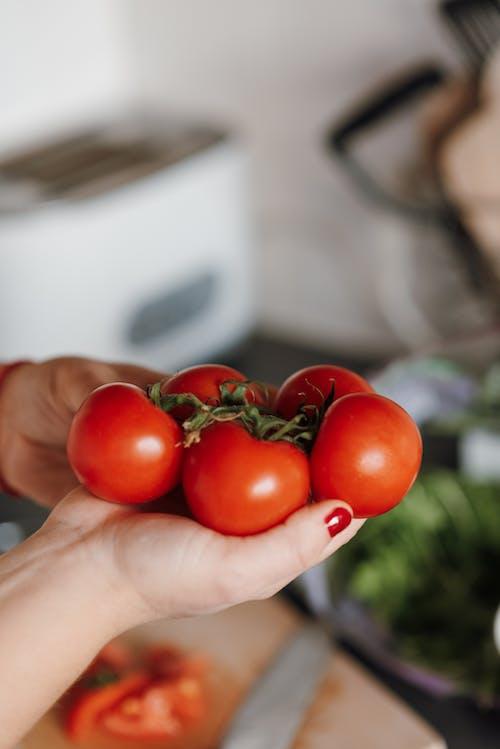 健康食品, 刀, 分公司 的 免費圖庫相片