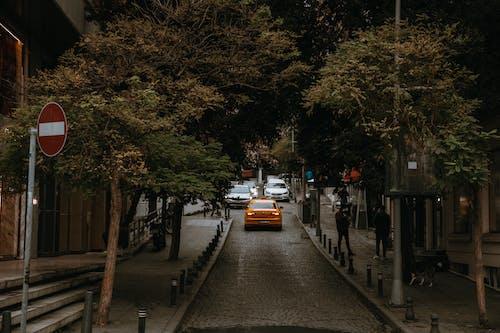 açık hava, arabalar, araç kullanmak içeren Ücretsiz stok fotoğraf