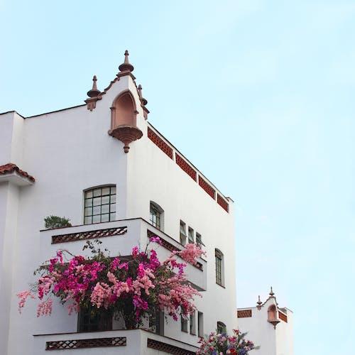 Free stock photo of ancient, architecture, arquitectura ciudad