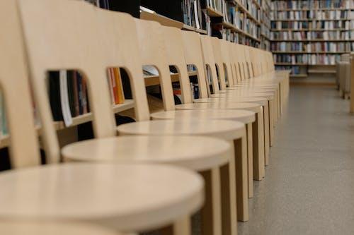 Fotos de stock gratuitas de aalto, adentro, asientos, biblioteca
