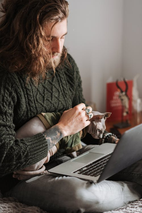 Crop unshaven male caressing adorable Sphynx cat while browsing internet on netbook in bedroom at home