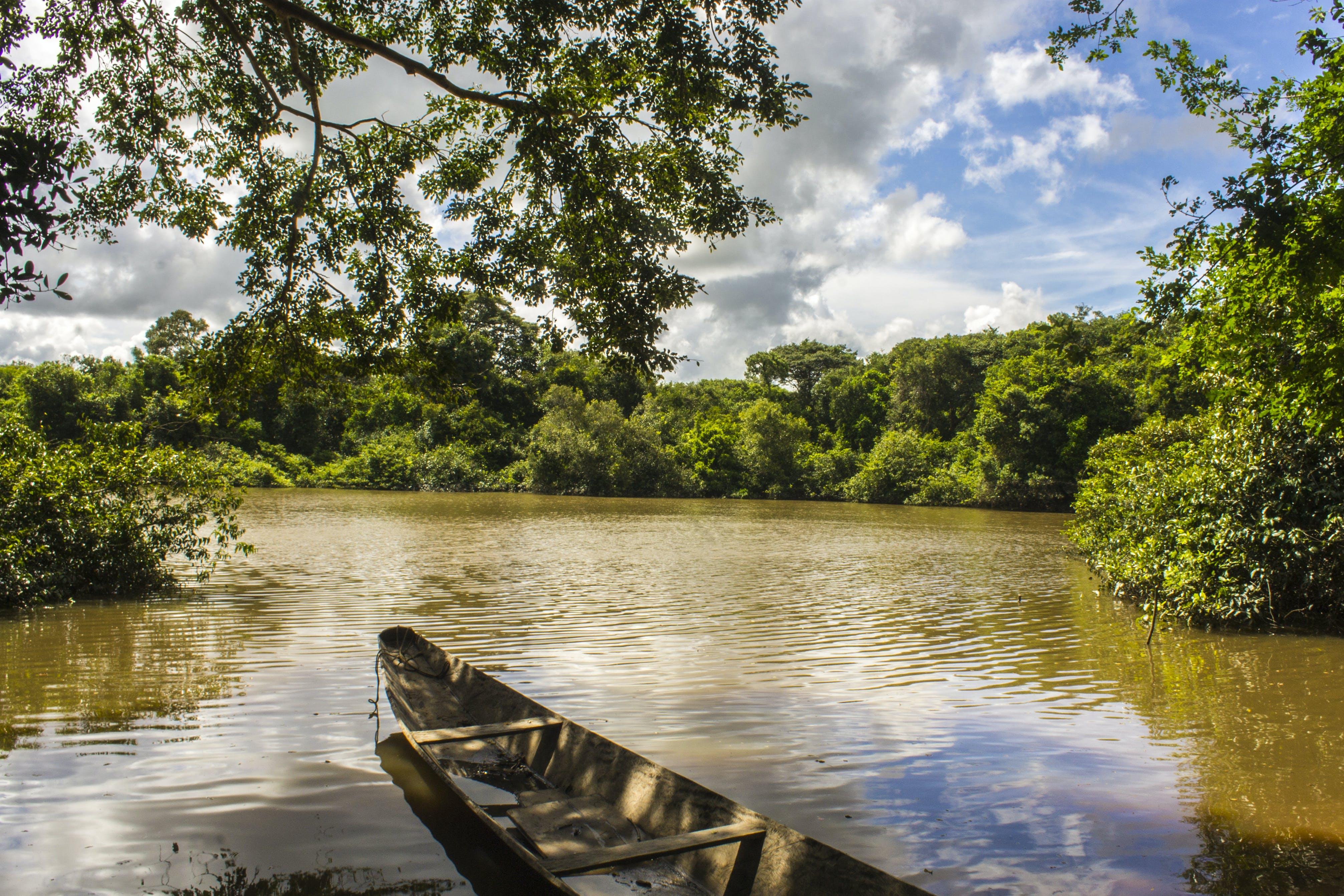Free stock photo of boat, Bote, llano, orinoquia