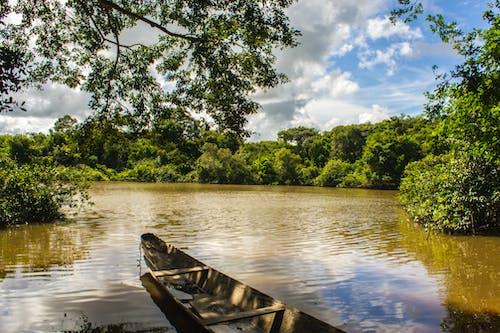 Základová fotografie zdarma na téma bote, člun, llano, orinoquia