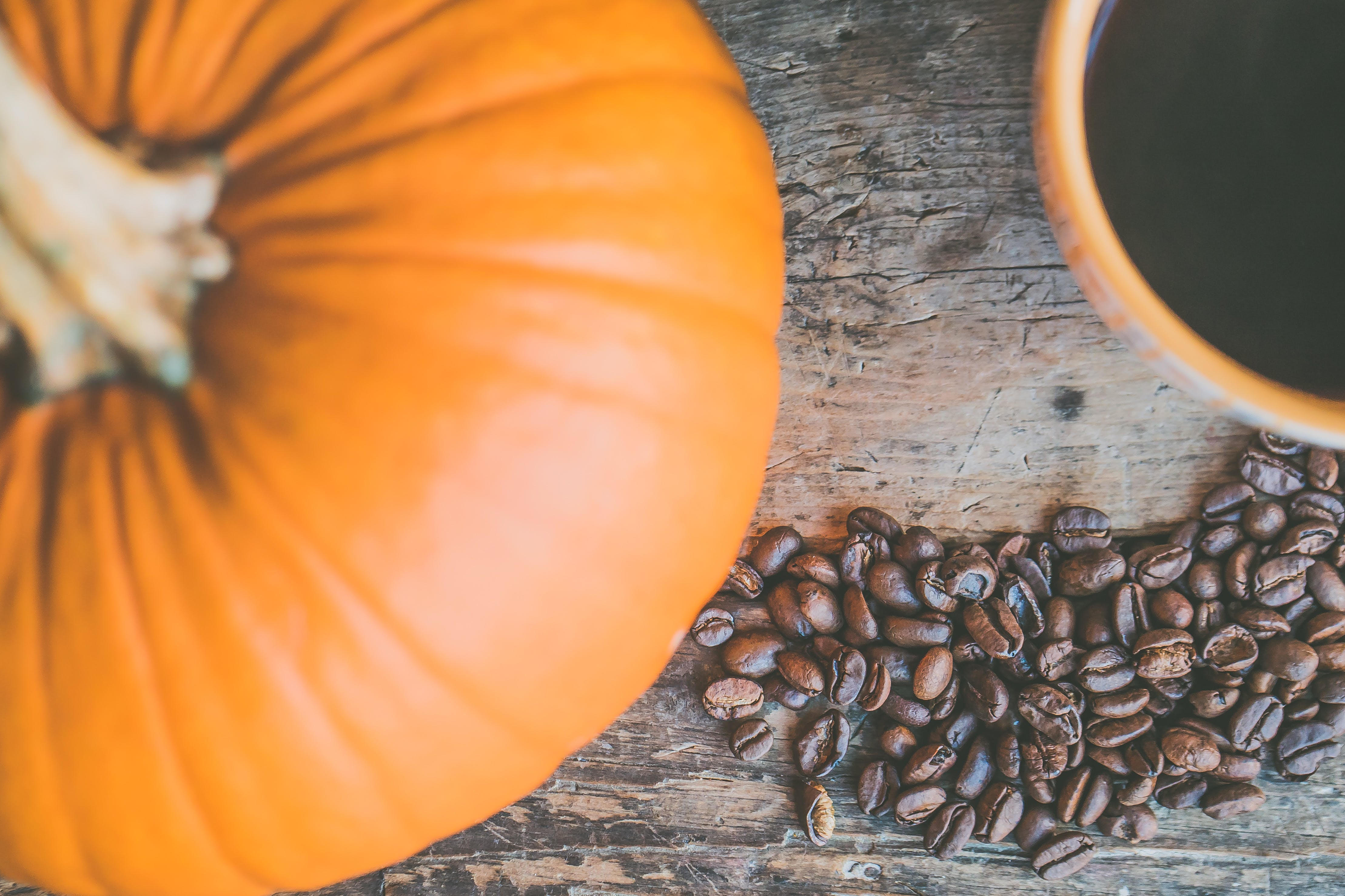 Orange Pumpkin and Coffee Beans