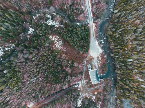 Breathtaking aerial view of leafless and green fir trees growing in forest near wild river on winter day