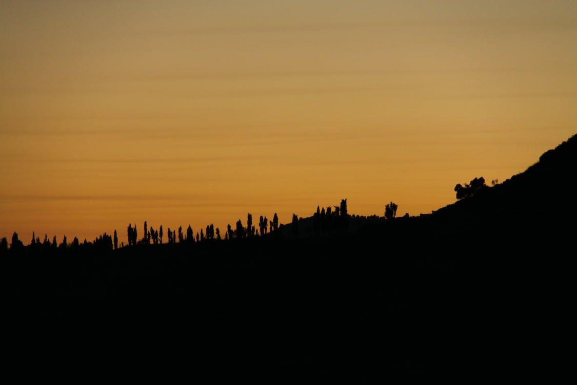 Free stock photo of evening sun, sundown
