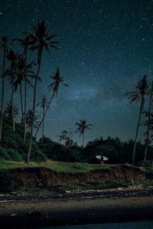 Foto stok gratis Bali, di luar rumah, Indonesia