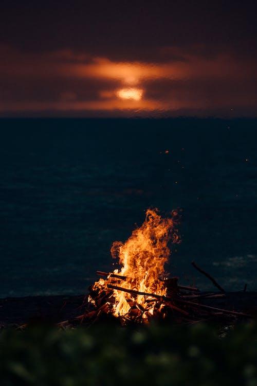 Foto d'estoc gratuïta de a l'aire lliure, capvespre, cremant
