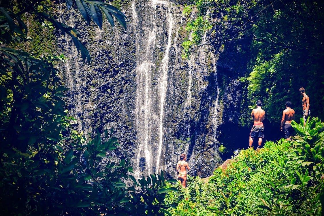 água, amigos, cachoeiras