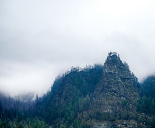 Misty sky over rocky mountain covered with green forest