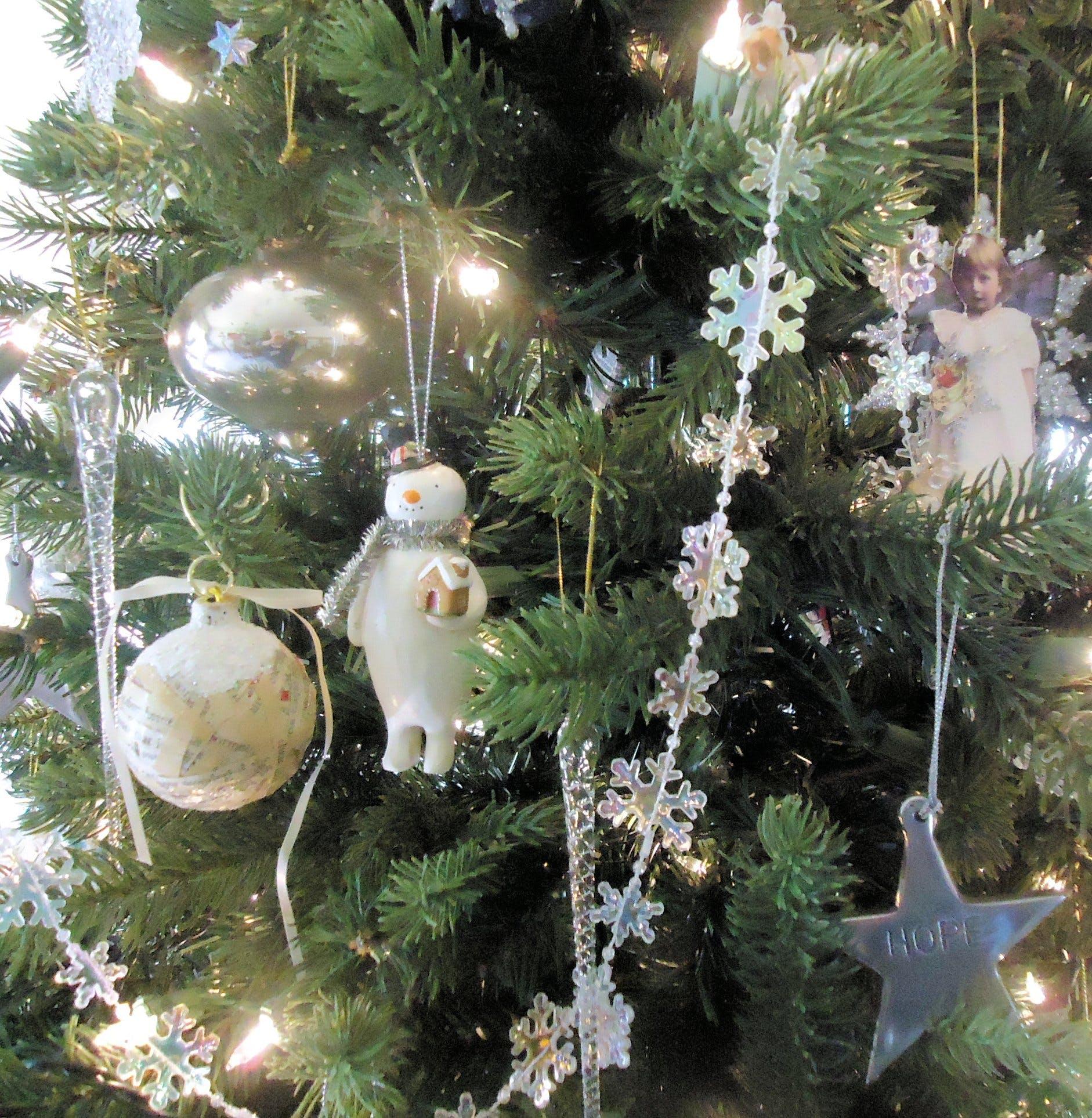 Free stock photo of christmas, tree