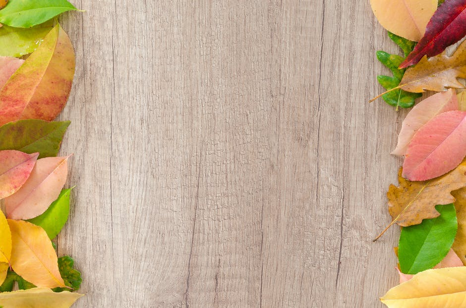 Assorted leaves on brown wooden surface