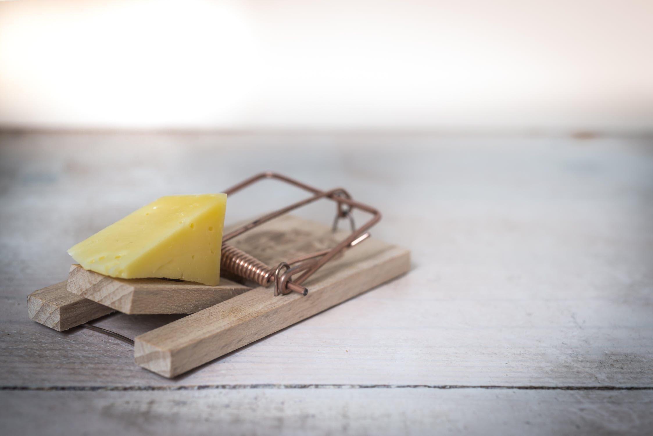 A cheese in a mousetrap.