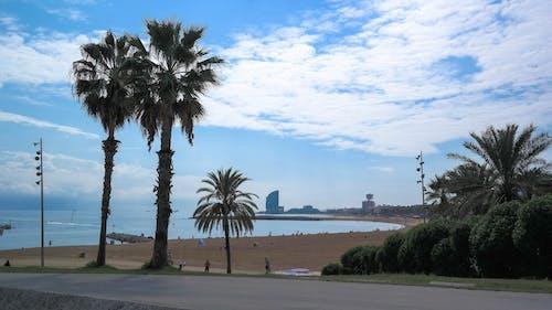 Ingyenes stockfotó barcelona, felhő, Földközi-tenger, Spanyolország témában