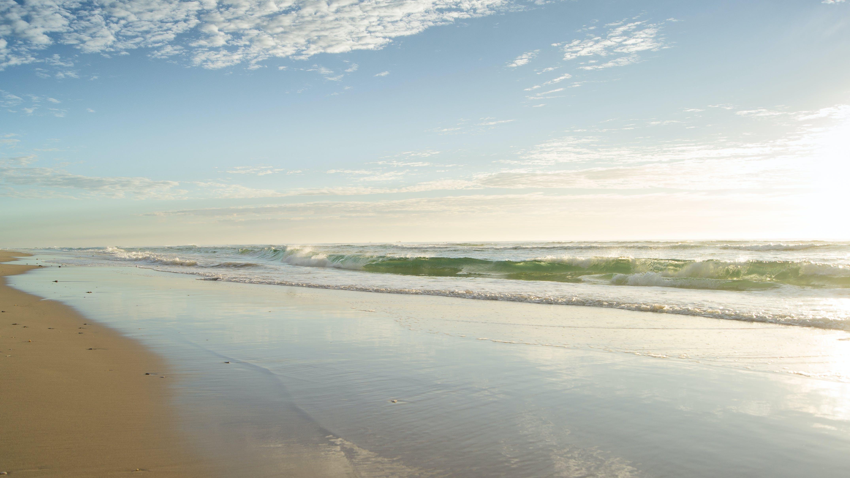 Seashore Under Clear Blue Sky
