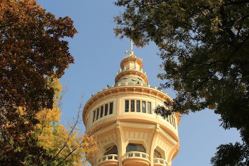 Kostnadsfri bild av budapest, stadspark