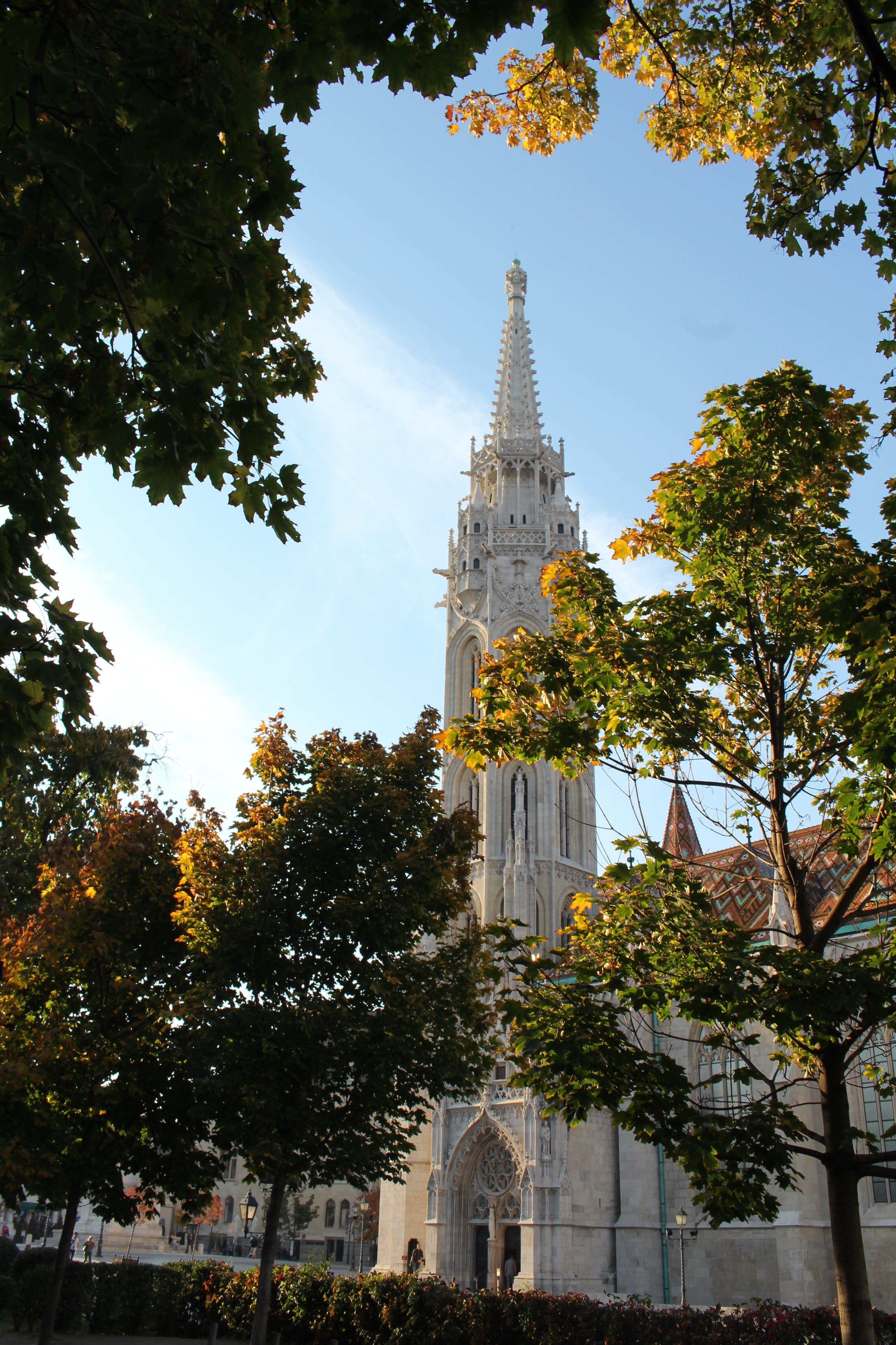Kostenloses Stock Foto zu bäume, budapest, kirche, kirchengebäude