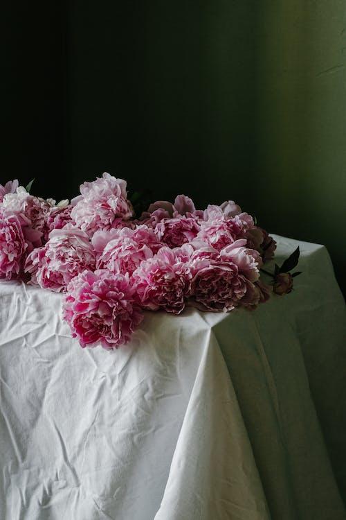 Rosa Blumen Auf Weißem Textil