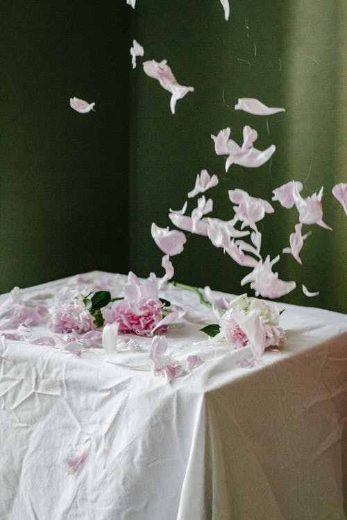 Petals of peonies falling on table with tablecloth
