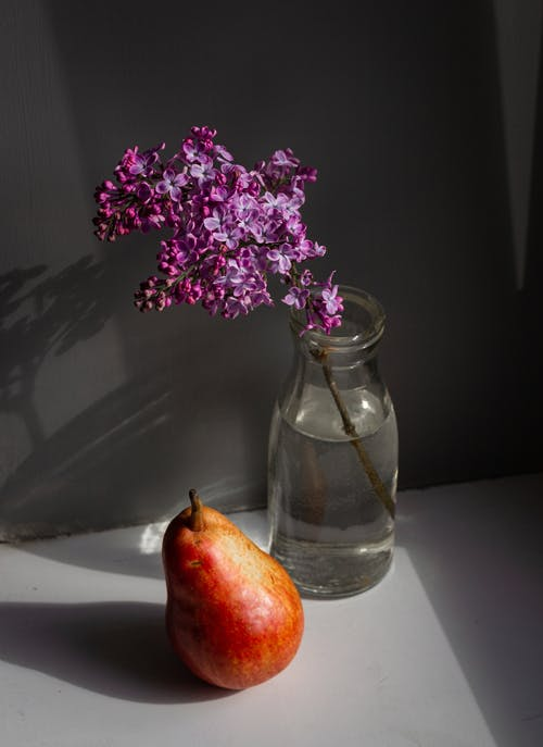 Fotos de stock gratuitas de adentro, agua, angulo alto