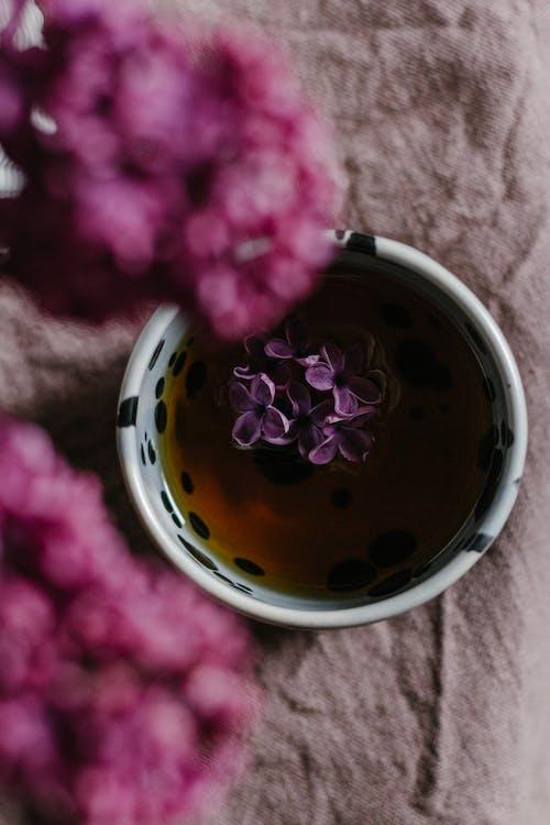 オーバーヘッド, お茶, カップの無料の写真素材
