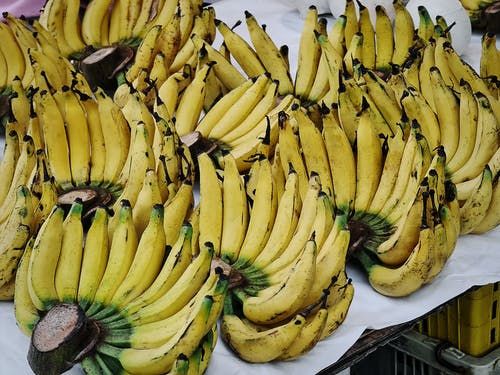 Free stock photo of a bunch of bananas, african, agriculture