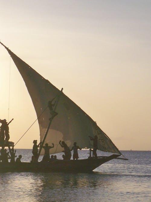 คลังภาพถ่ายฟรี ของ การเดินเรือ, ทะเล, เรือ, แซนซิบาร์