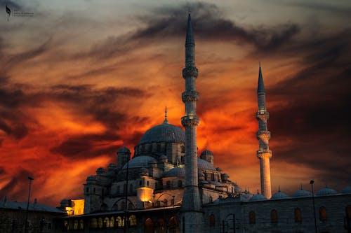 Foto d'estoc gratuïta de Canon, capvespre, gall dindi, Istanbul
