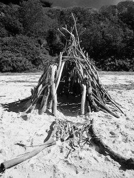Twig Tent on Seashore