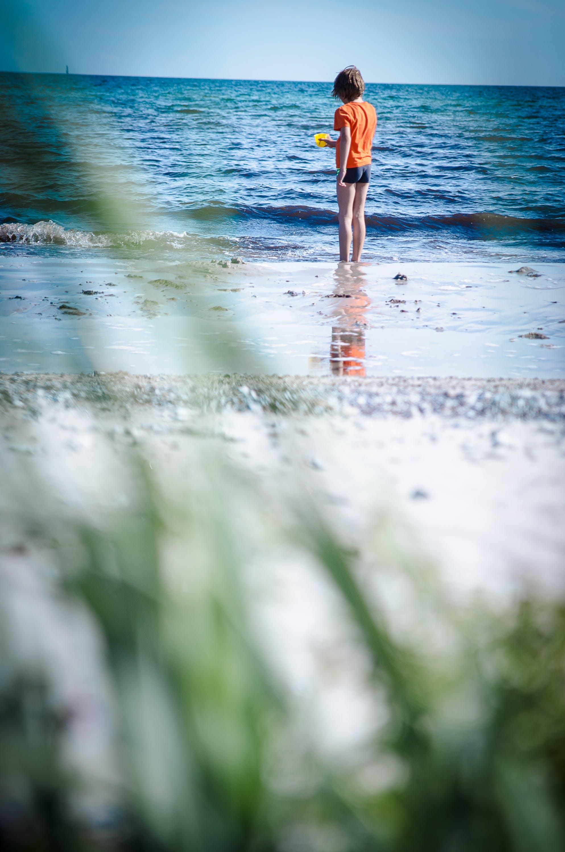Free stock photo of beach, dune, sea