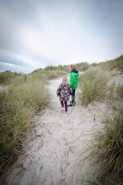 Free stock photo of beach, dune, kids, siblings