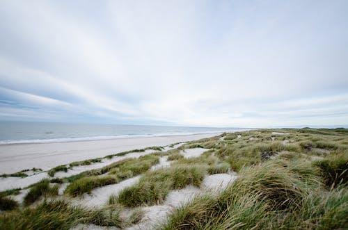 Ingyenes stockfotó ég, felhők, fű, homok témában