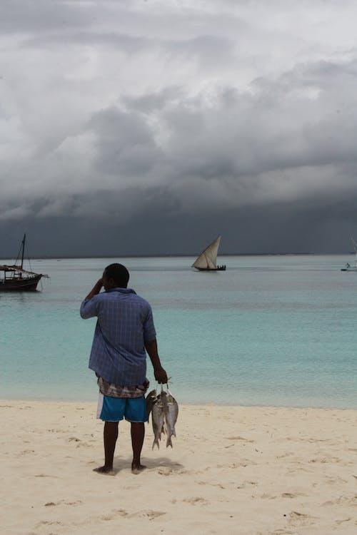 คลังภาพถ่ายฟรี ของ ชายหาด, ชาวประมง, ทะเล, ประมง