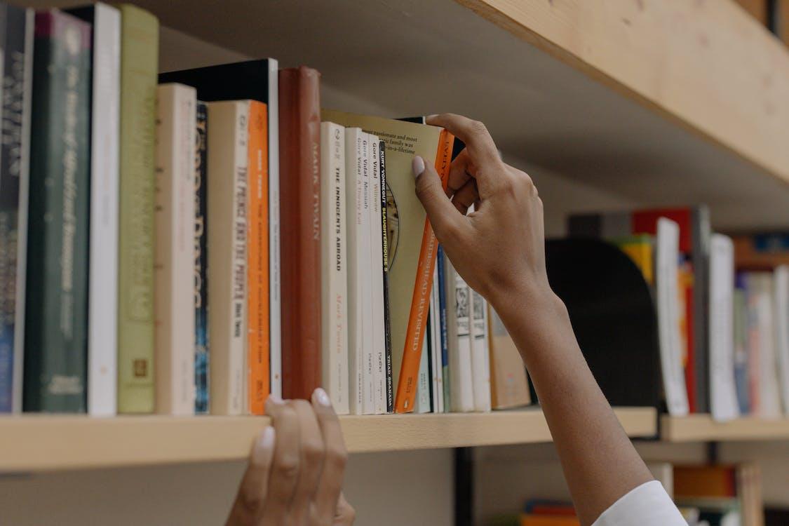 Persoon Die Een Boek Op Houten Plank Houdt