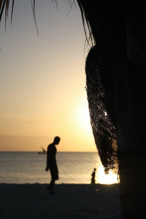 คลังภาพถ่ายฟรี ของ ชายหาด, ดวงอาทิตย์, ตะวันลับฟ้า, แซนซิบาร์