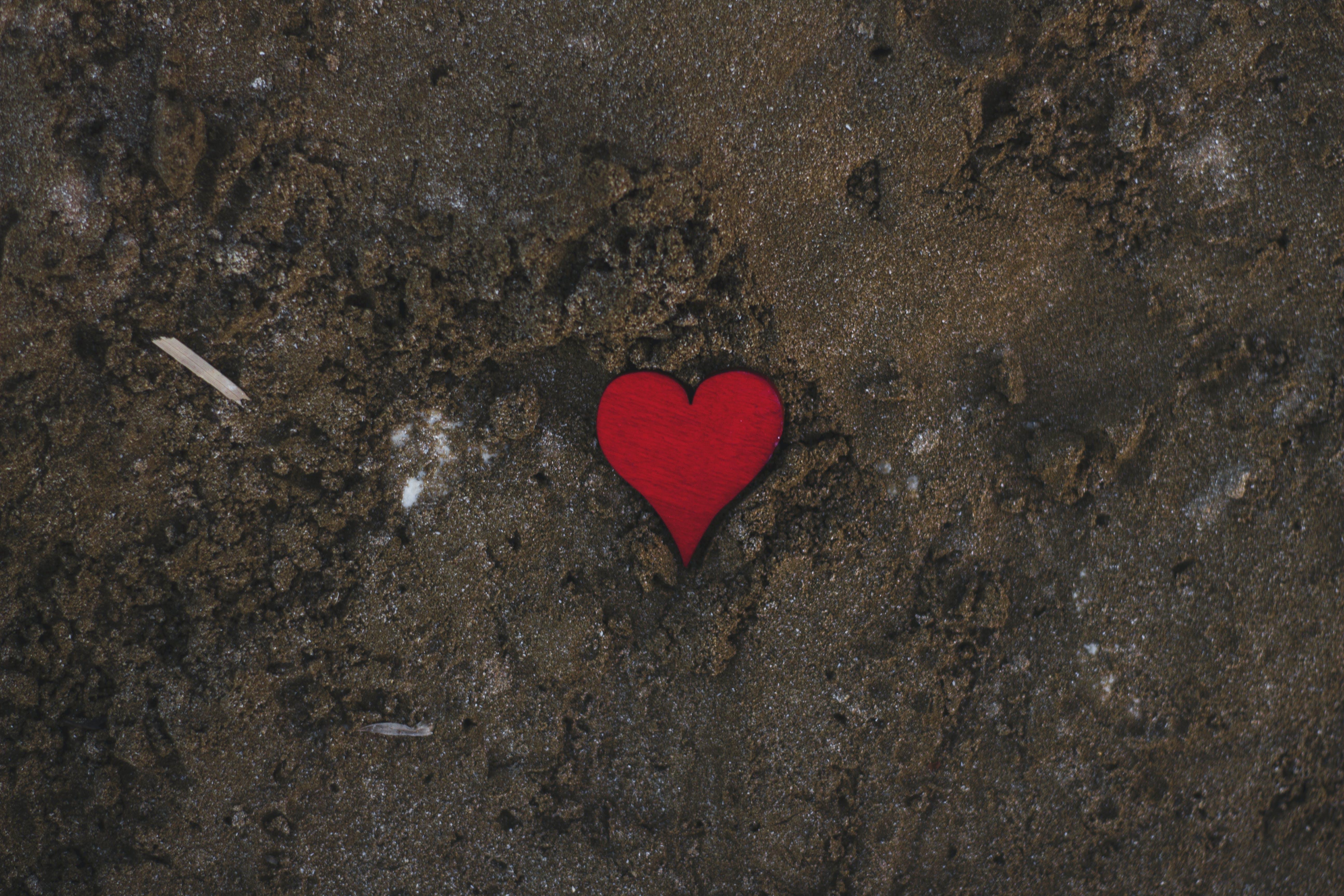 Kostnadsfri bild av djuphav, kärlek, vsco