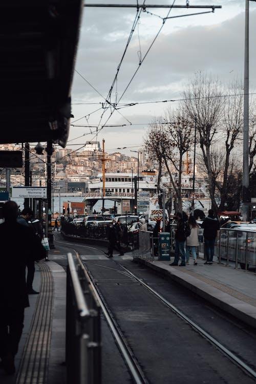 Základová fotografie zdarma na téma auto, bezlistý, budova